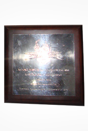 National Business Excellence Awards (Manufacturing Other Sector) - 2008 (Merit Award)