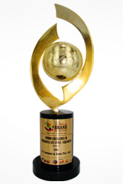 Global Awards for Brand Excellence - 2012 (Fashion & Life Style - Footwear (DSI) - DSS)