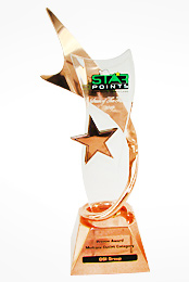 Star Points Winner Highest Growth in Transaction (Multiple outlet category) - 2010